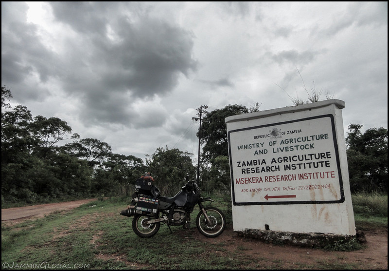 I rode a few kilometers out of town towards the Msekera Research Institute, where my dad was stationed at. I was also keeping an eye on those rain clouds.