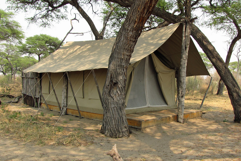 Somalisa tent; an elephant ran its trunk along the roof one night, looking for acacia pods.