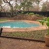 Ivory Lodge swimming pool (shaped like an elephant's ear)