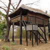 Bungalow at Ivory Lodge, just outside of Hwange NP