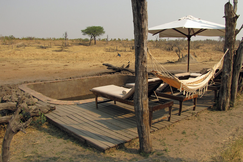 Logs and rocks are placed around the pool to keep the baby elephants from falling in.