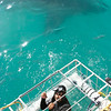Me and Great White Shark during shark diving, Gansbaai