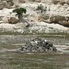 Quarry at Robben Island