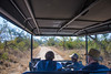 The first Game Drive