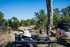 Our last game drive at Savuti Camp