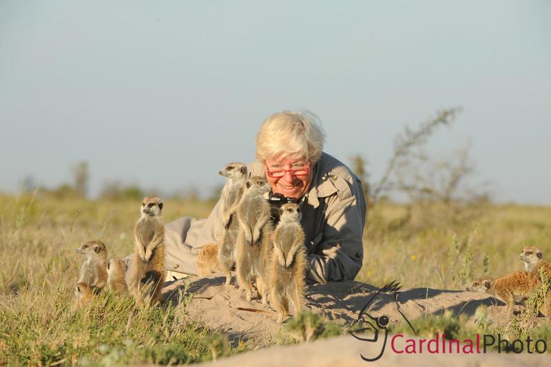 Meerkats, Jack's Camp, Botswana