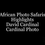Africa Slideshows :