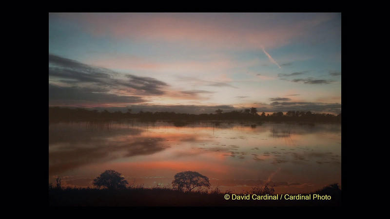 Video of a slideshow I did in 2008 based on our early Botswana Safaris.