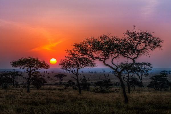 Africa Sunset Sunrise