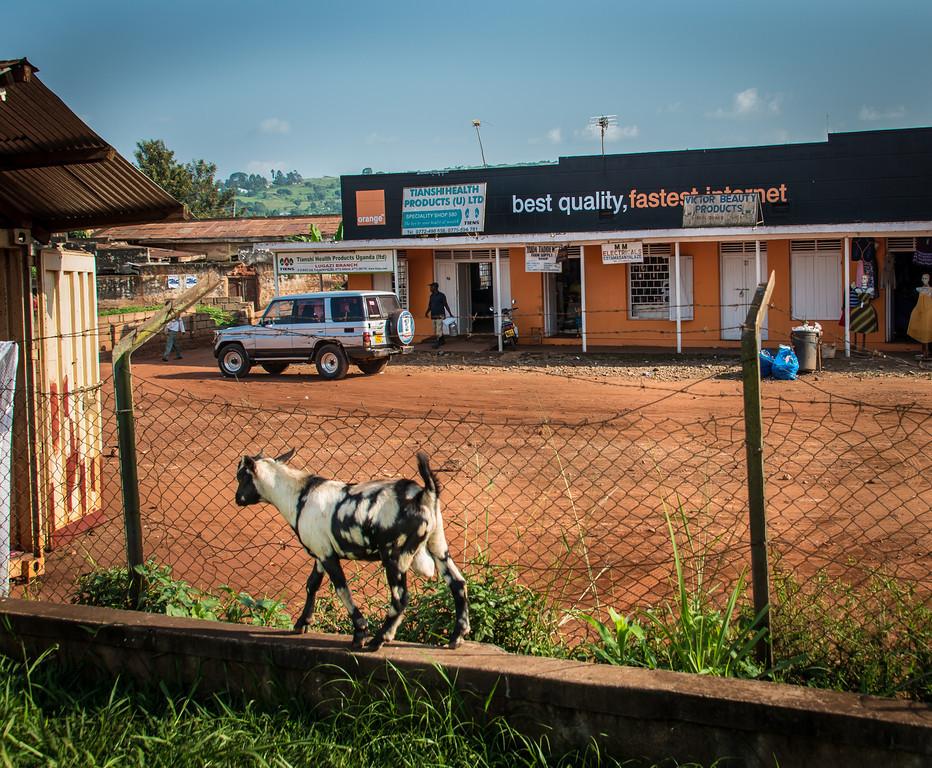 059_Uganda_Jan_2013_-7453