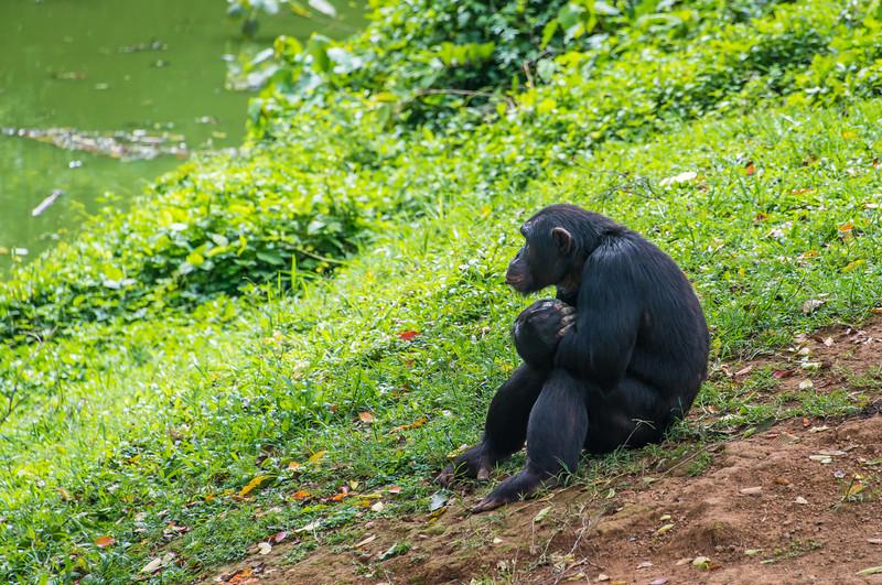 149_Uganda_2013-7856