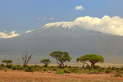 Mt Kilimanjaro from Amboseli