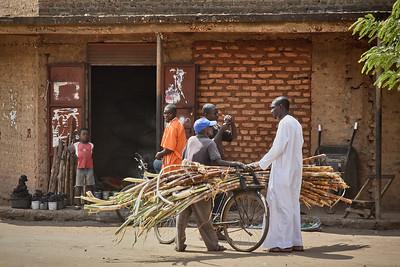 Sugar Cane Merchant -M