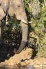 CRay-Africa16-9063