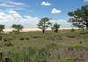 Etosha Pan, Etosha N.P., Namibia