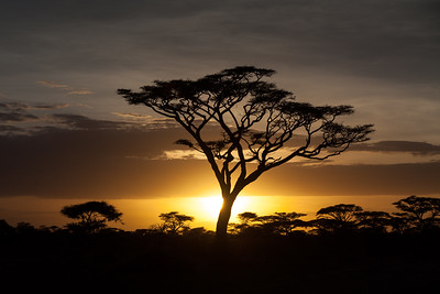 Sunset Over Ndutu