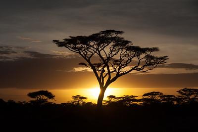 Sunset Over Ndutu
