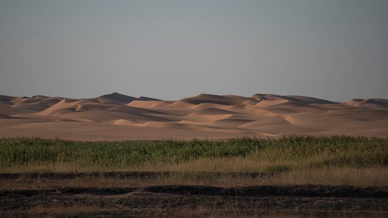 View west from Timimoun oasis.  I walked some way out of town one afternoon.