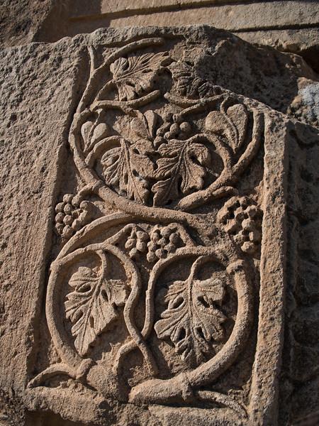 Grapevines, Timgad
