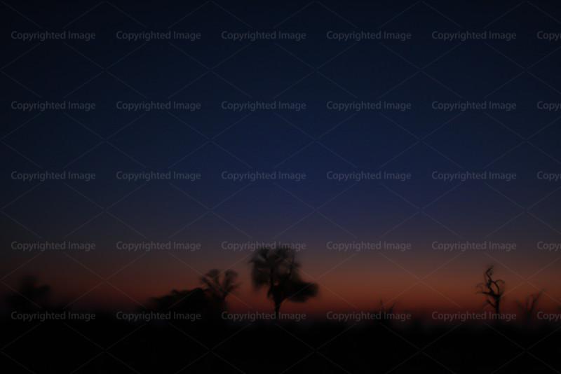 CRay-Africa16-8553