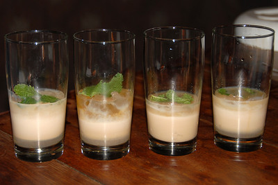 It wasn't disgusting, but it wasn't your usual drink either...we named them Thamalakane Mudslides!...