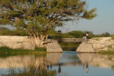 When I finally got to Maun, I stayed at the 'Old Bridge' backpackers'...