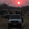 Game drives start early in the morning.