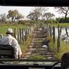 Crossing the bridge to Mapula with Dicks and Simon