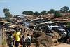 Kibera, Slum Near Nairobi