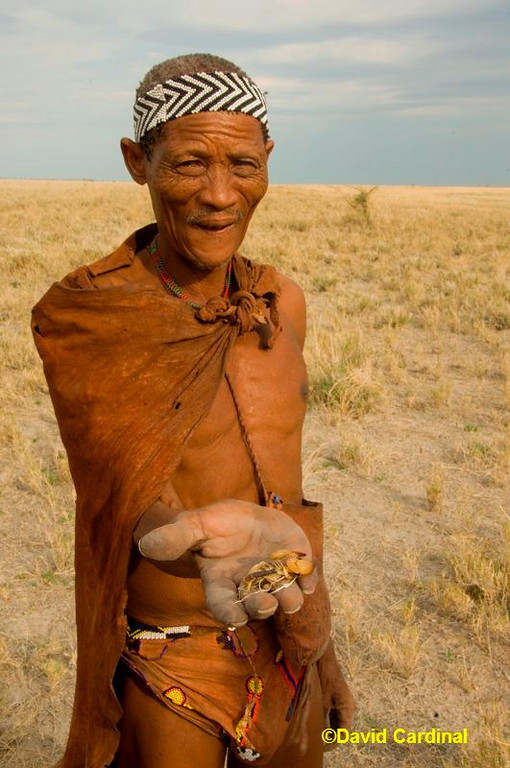 Bushman Healer with Yellow Scorpion