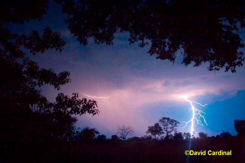 Thunder Storm over the Savuti Channel