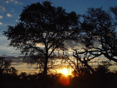 Sunset at the waterhole where we watched the lions.