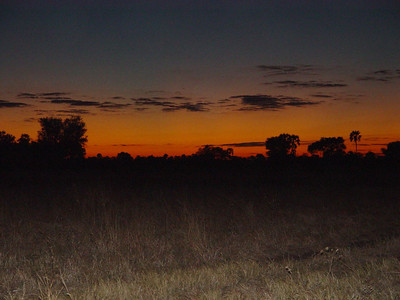 Red skies at night, sailors' delight - except that we're in the middle of the bush.
