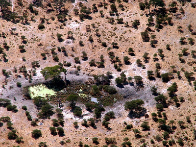 We looked carefully as we flew over this waterhole, but did not see any wildlife.