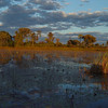 The delta landscape was never the same - or so it seemed in the ever changing light conditions.
