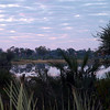 View of the waterhole at dawn - from our tent.