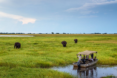 Tourists in a boat observe elephants along the Chobe River, Botswana, Africa
