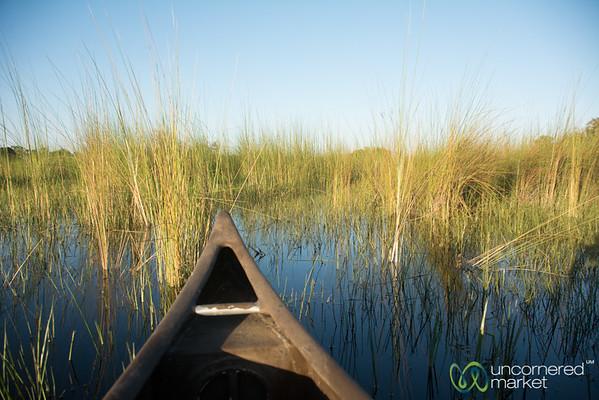Okavango Delta by Mokoro - Camp Okavango, Botswana