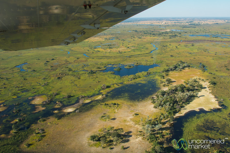Flying Over Okavango Delta, Botswana