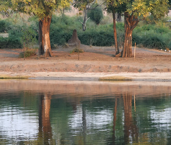 Chobe River, Chobe National Park, Botswana