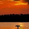 Botswana : 1 gallery with 1 photo