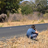 Greg taking his pictures of elephants.