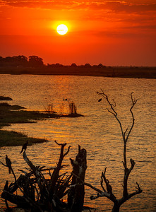 Beautiful sunset at Chobe River.