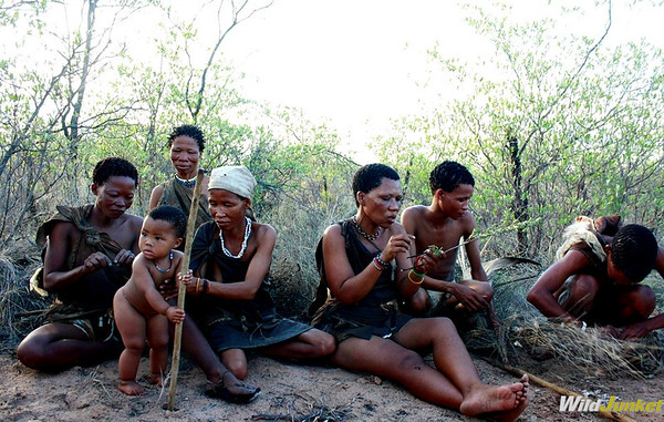 The San people showing us their way of life