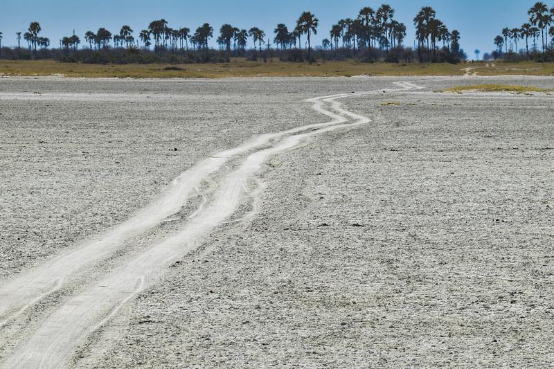 It is easy to get dizzy on salt pans roads