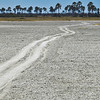 It is easy to get dizzy on salt pans roads