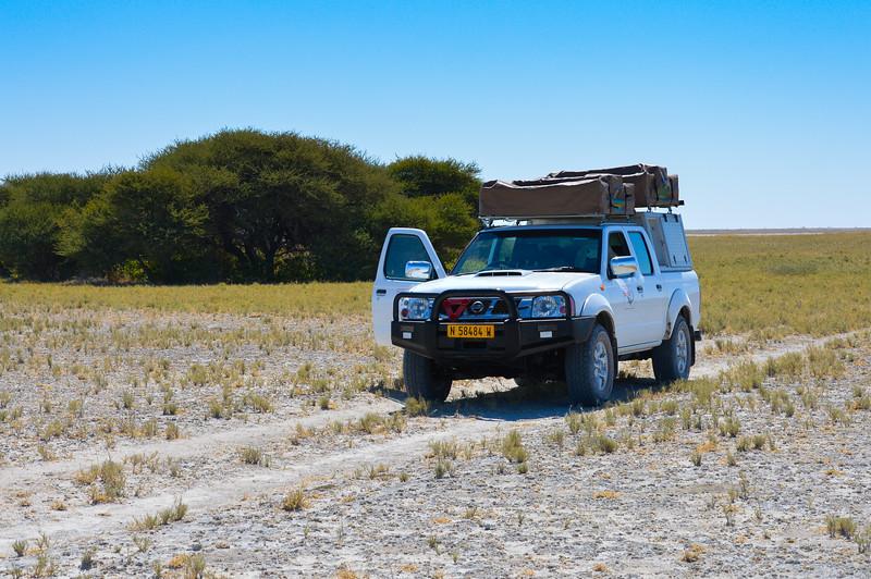 Driving through Makgadikgadi