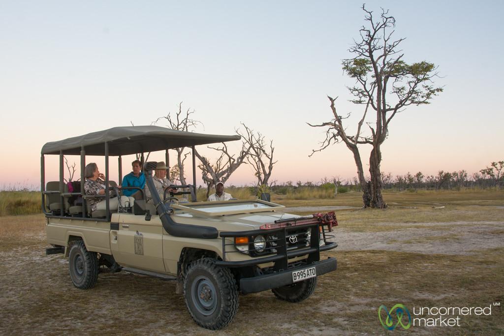 Sundowner in Moremi Game Reserve - Botswana