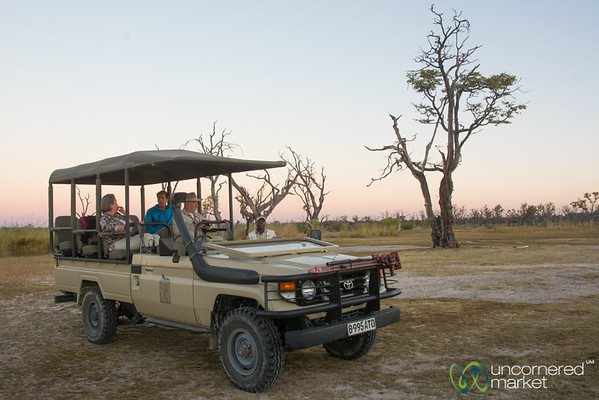 Sundowner in Moremi Game Reserve - Botswana