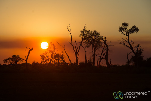 Sunset at Camp Xakanaxa, Botswana